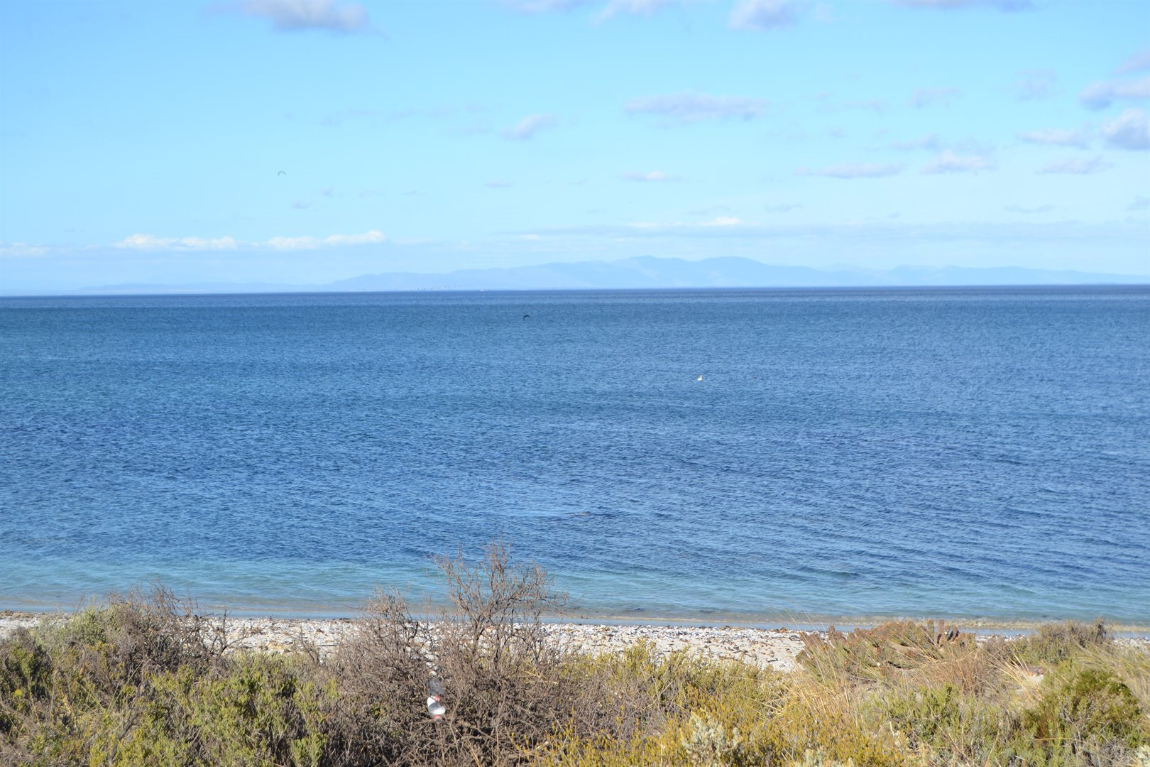 Shelley Point property for sale. Ref No: 13467564. Picture no 6