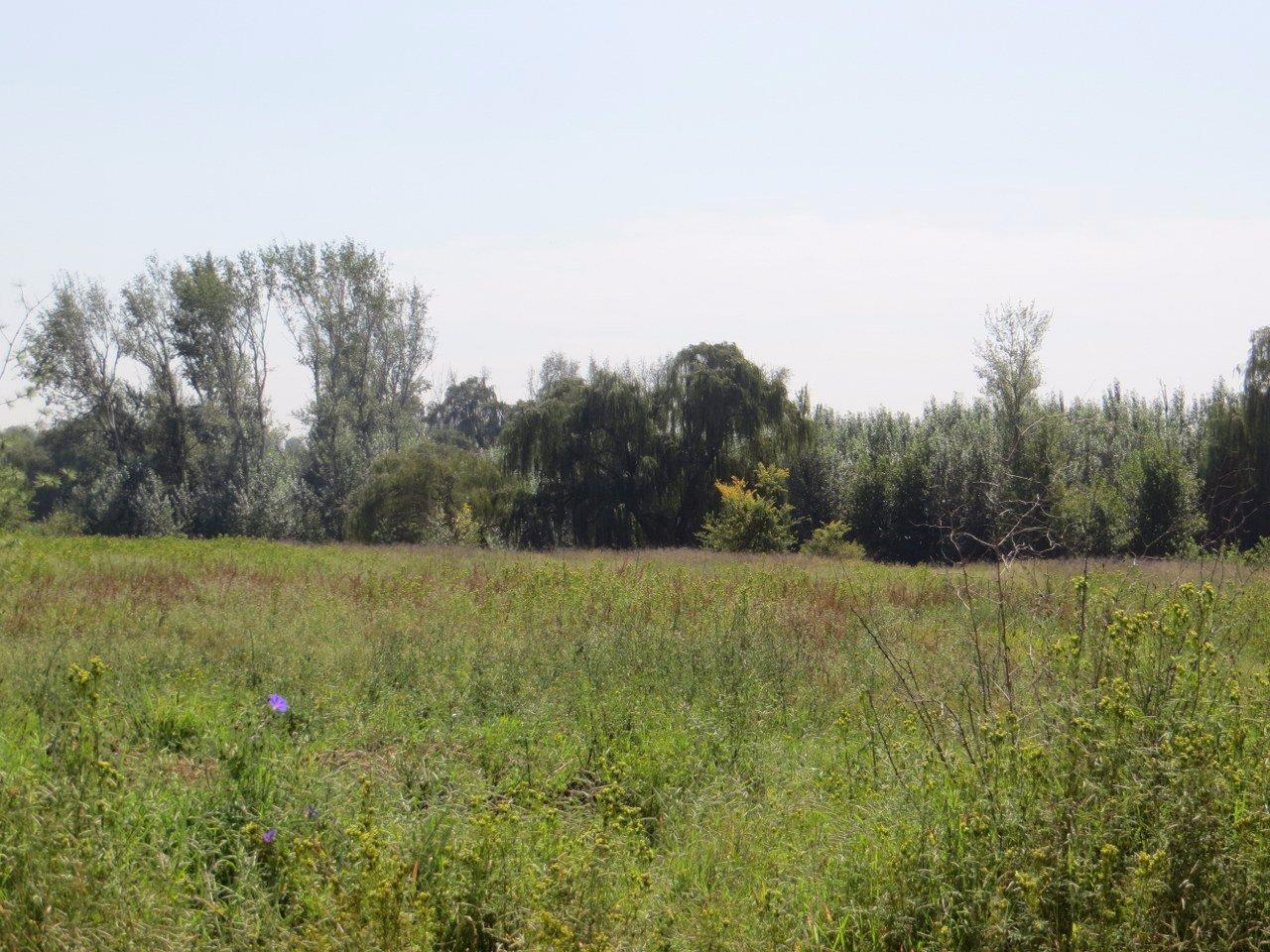 Kliprivier property for sale. Ref No: 13516794. Picture no 10