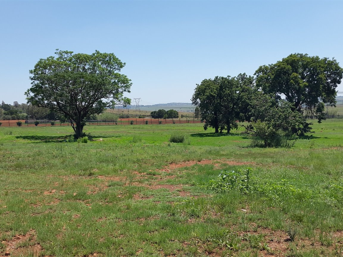Doornkloof A H for sale property. Ref No: 13283502. Picture no 20