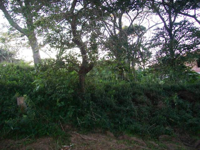 Pumula for sale property. Ref No: 2744217. Picture no 2