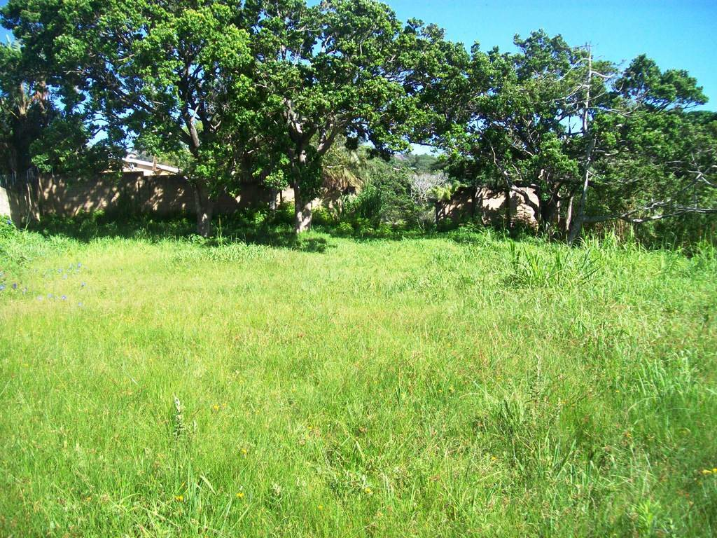 Uvongo property for sale. Ref No: 13261518. Picture no 3