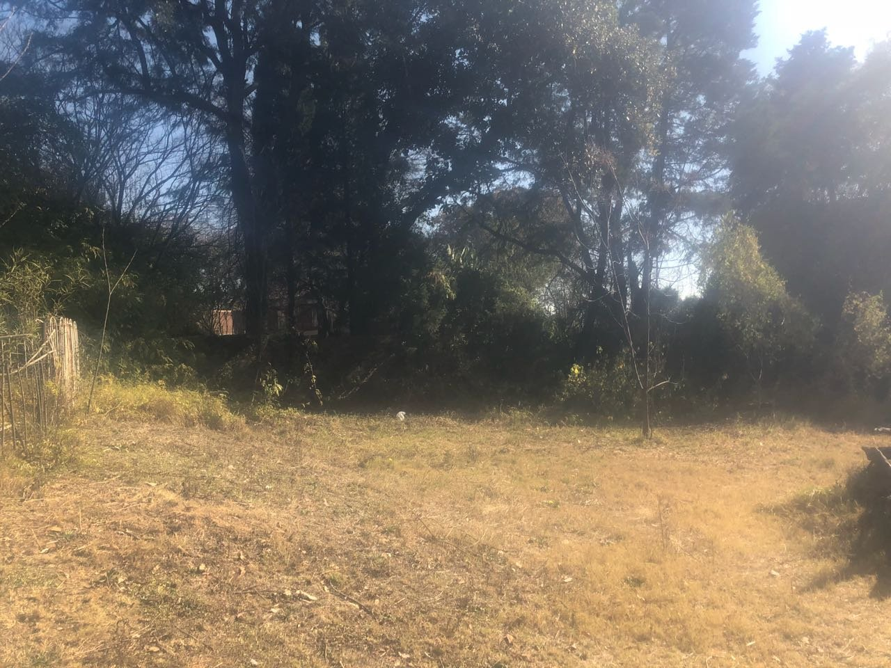 Sandton, Bryanston Property  | Houses For Sale Bryanston - Page 2, Bryanston, Vacant Land  property for sale Price:10,800,000
