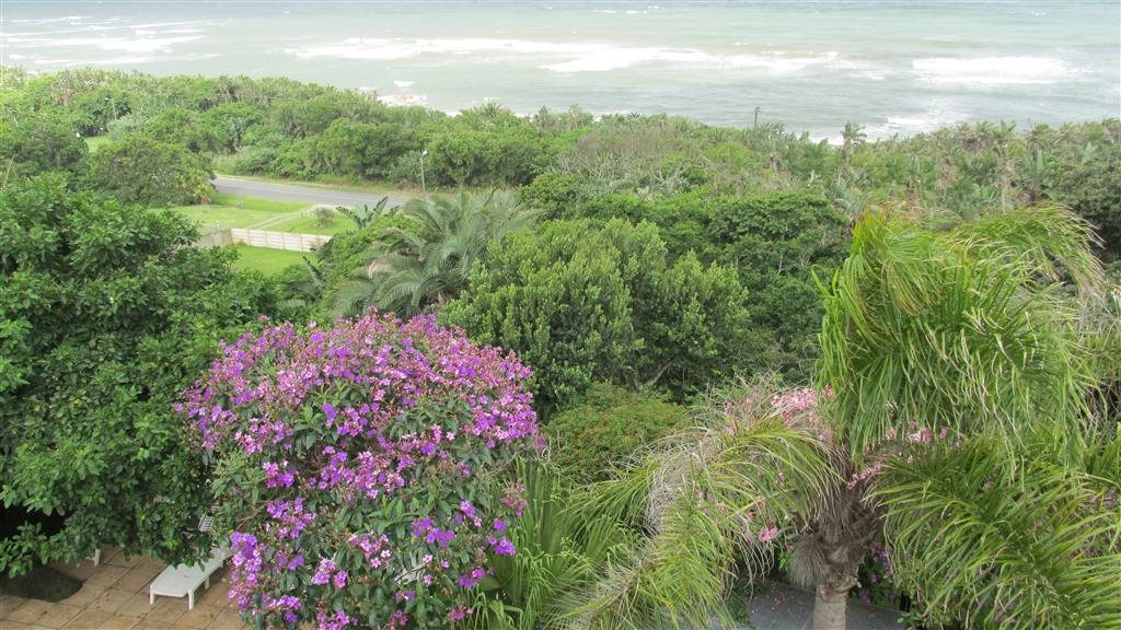 Palm Beach for sale property. Ref No: 13384201. Picture no 23