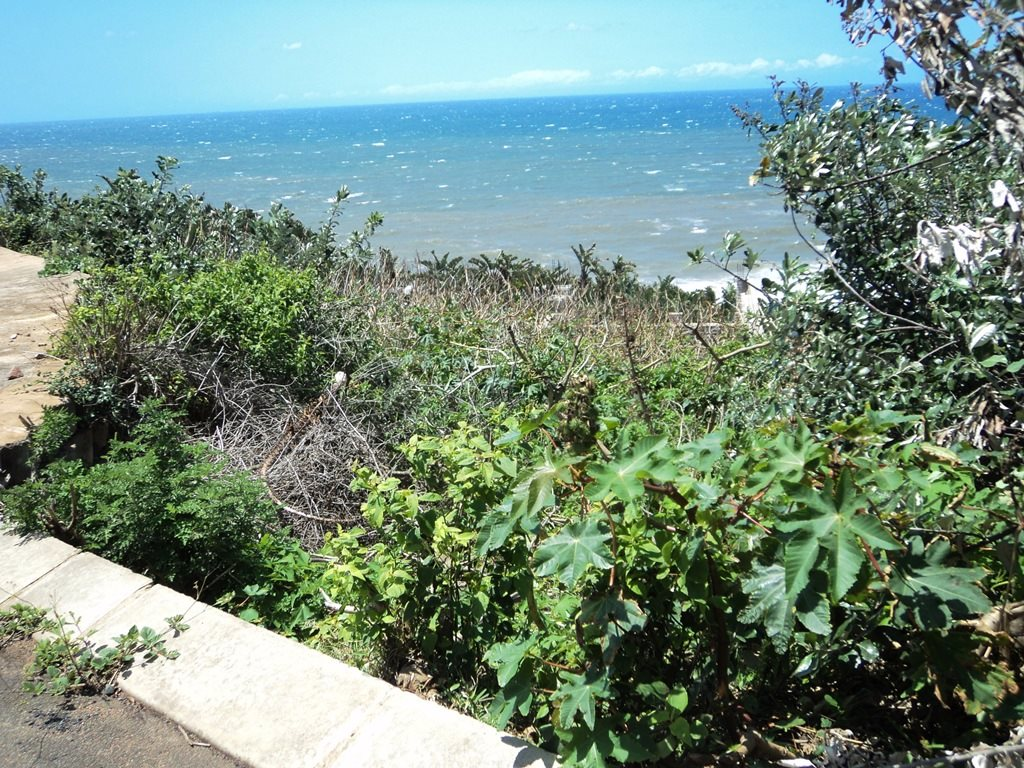 Bazley Beach property for sale. Ref No: 12767462. Picture no 10