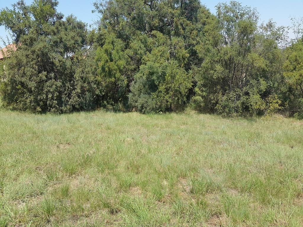 Rietvlei Heights Country Estate property for sale. Ref No: 13296023. Picture no 8