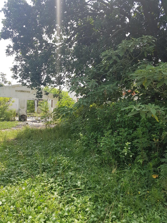 Craigieburn property for sale. Ref No: 13591749. Picture no 2