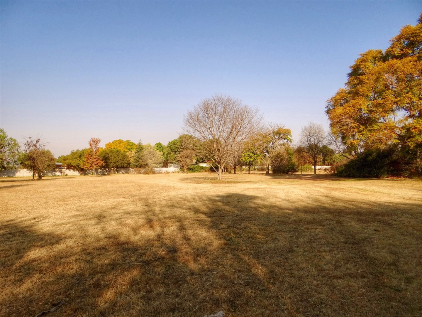 Monavoni property for sale. Ref No: 13506068. Picture no 6