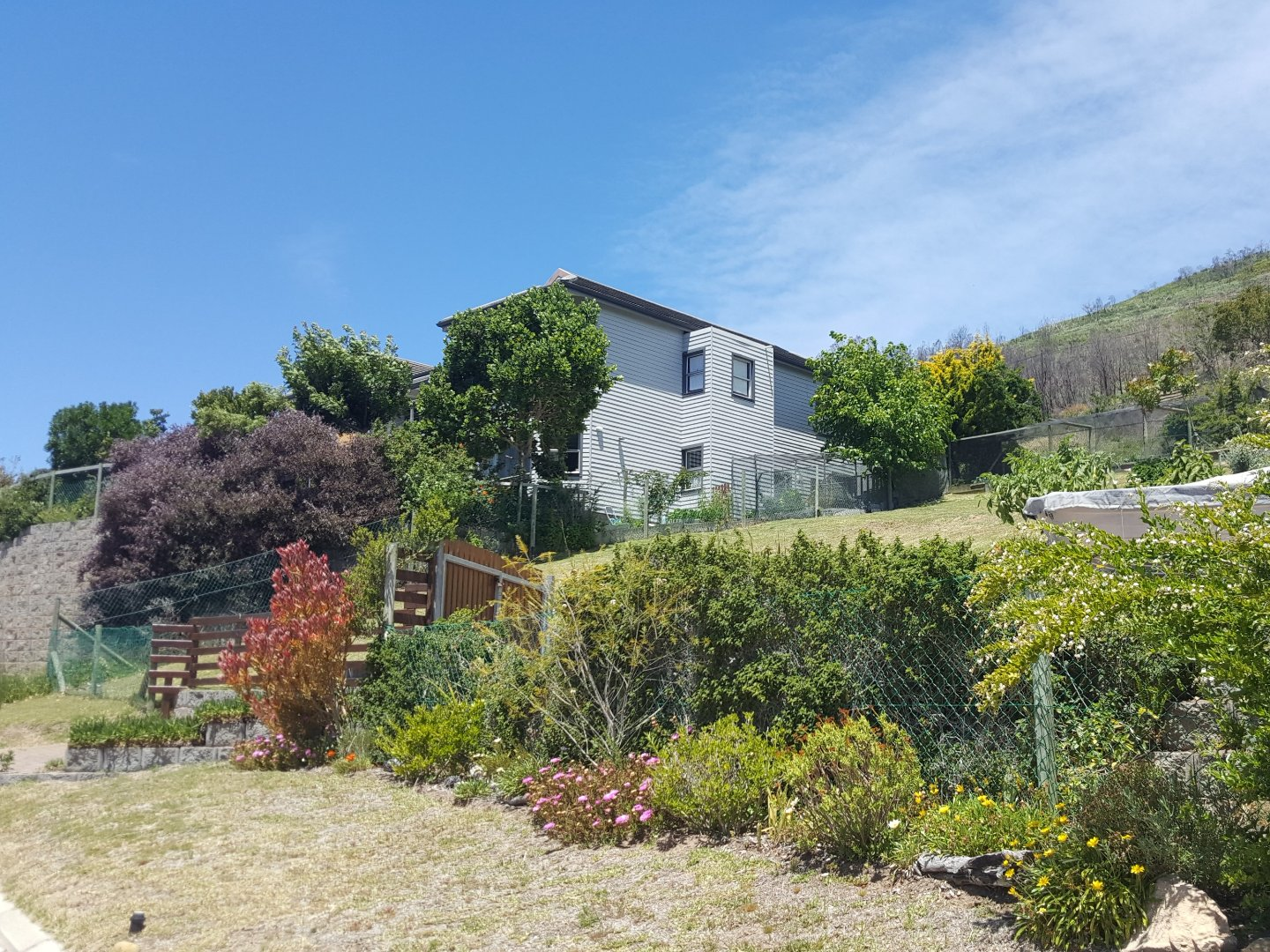 Brenton On Lake property for sale. Ref No: 13569633. Picture no 9