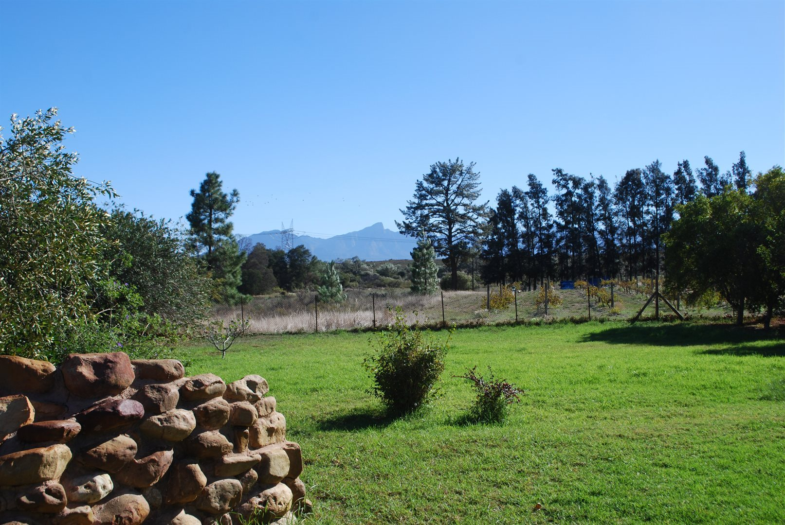 Tulbagh property for sale. Ref No: 13483757. Picture no 10