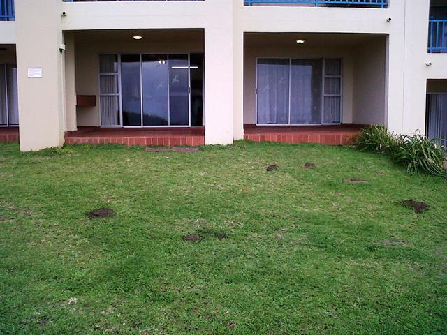 Uvongo property for sale. Ref No: 12734338. Picture no 14