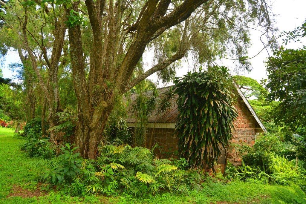 Woodgrange property for sale. Ref No: 13413908. Picture no 26