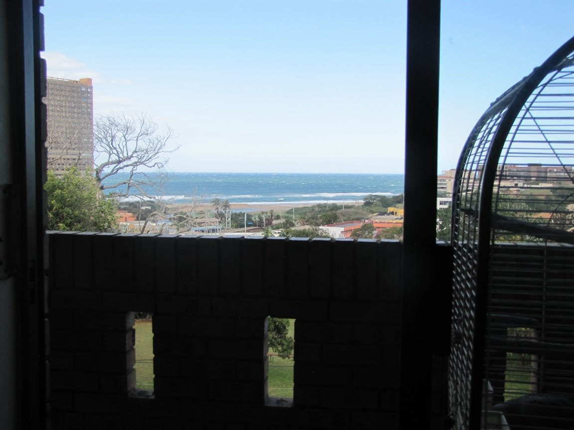 Amanzimtoti property for sale. Ref No: 13377010. Picture no 12