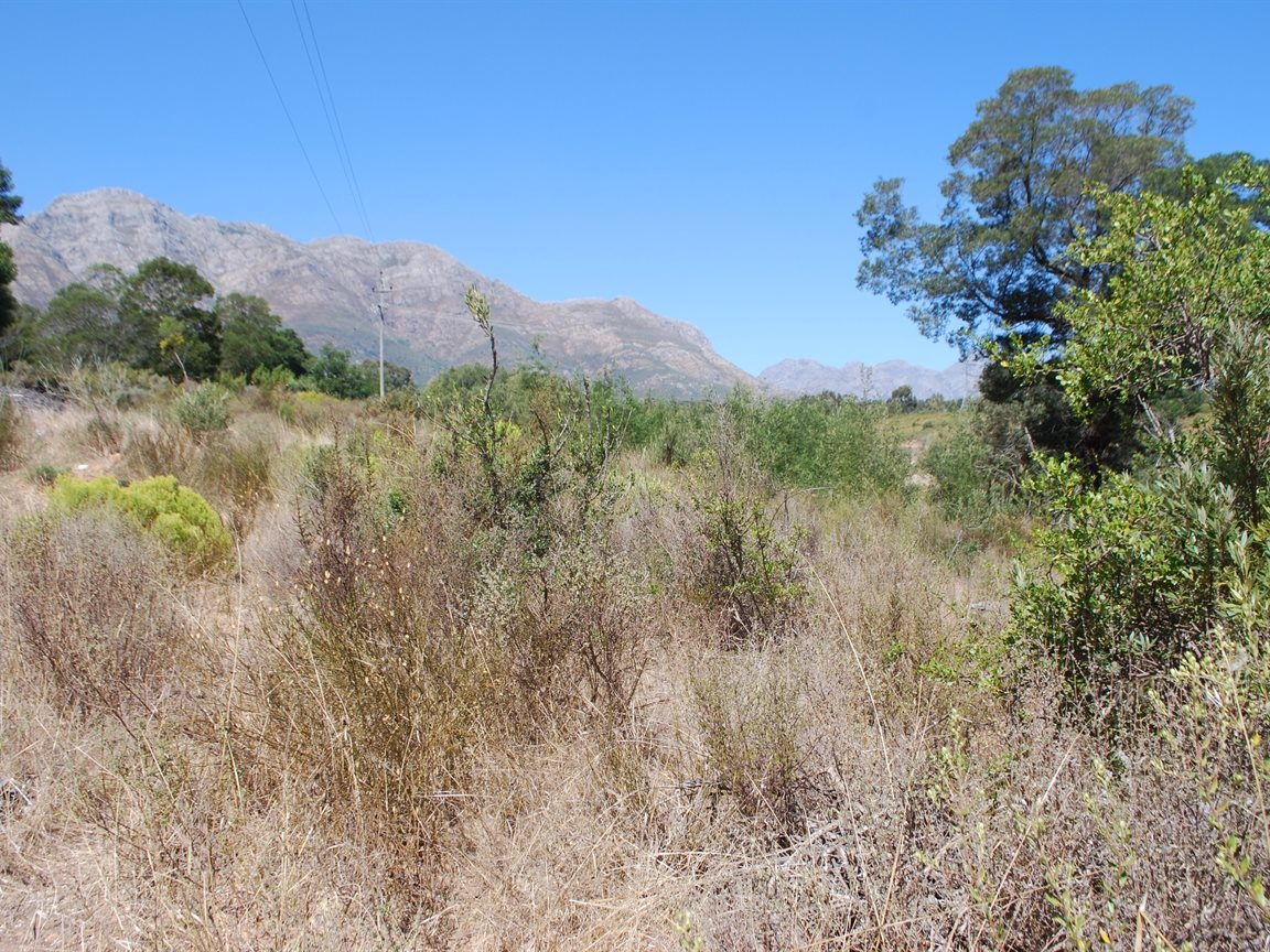 Tulbagh property for sale. Ref No: 12782916. Picture no 7