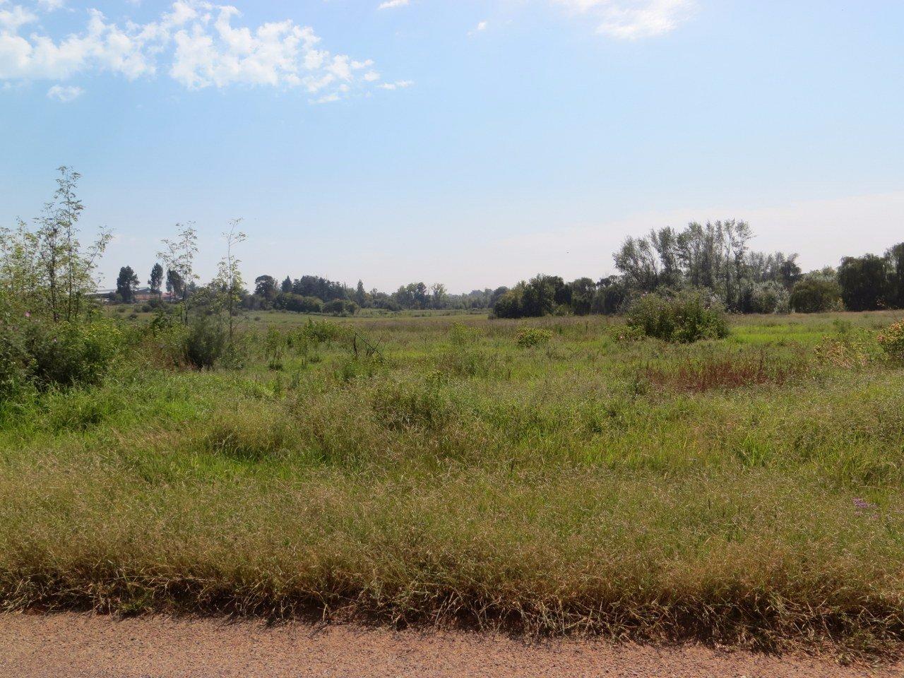 Kliprivier property for sale. Ref No: 13516794. Picture no 12