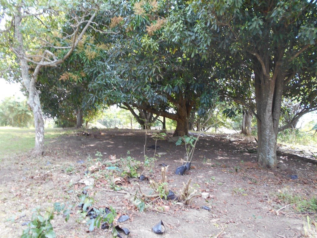 Uvongo property for sale. Ref No: 13325400. Picture no 8