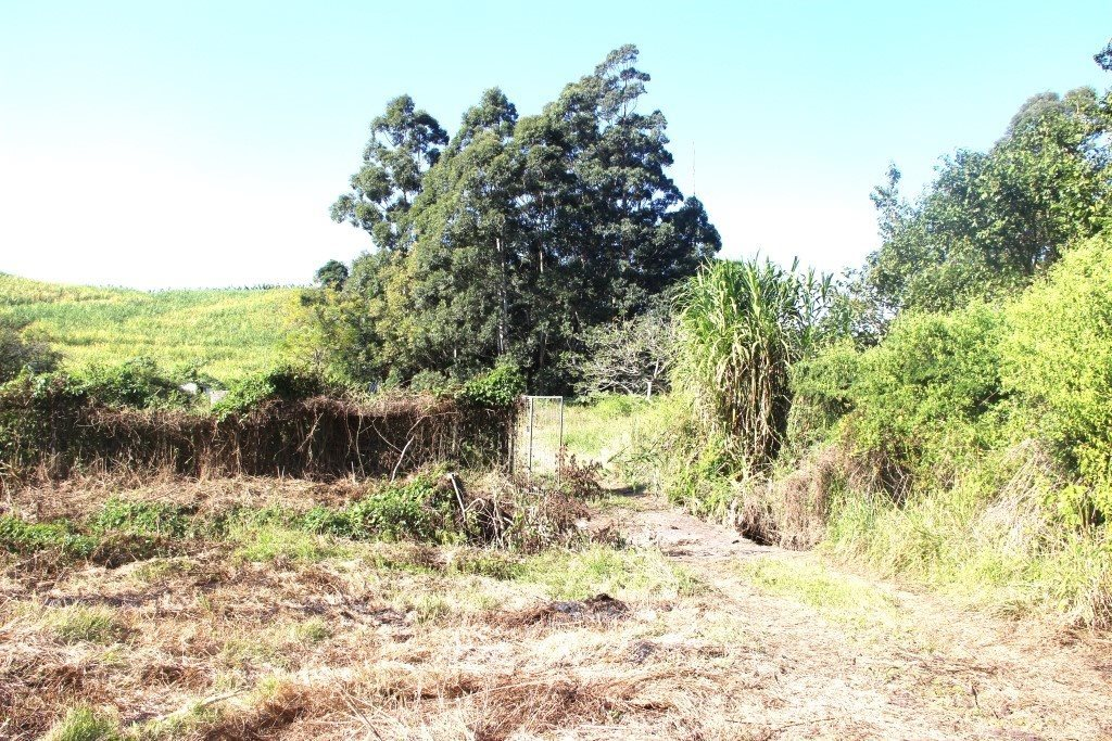Marina Beach property for sale. Ref No: 13493225. Picture no 3
