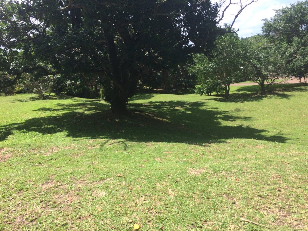 Uvongo for sale property. Ref No: 13281674. Picture no 25