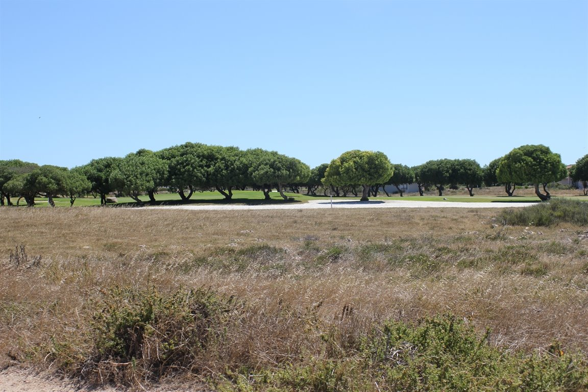 Langebaan Country Estate property for sale. Ref No: 12771835. Picture no 3