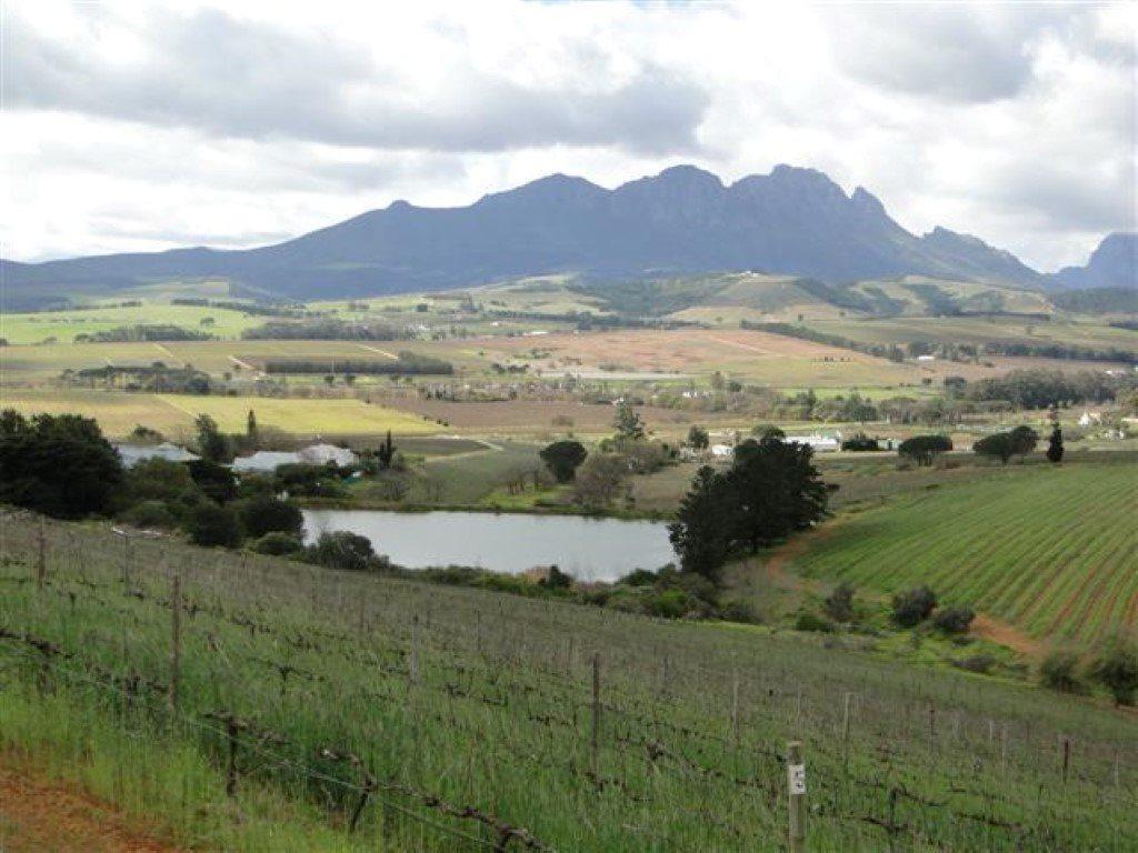 Stellenbosch, Stellenbosch Property  | Houses For Sale Stellenbosch, Stellenbosch, Farms 4 bedrooms property for sale Price:42,000,000