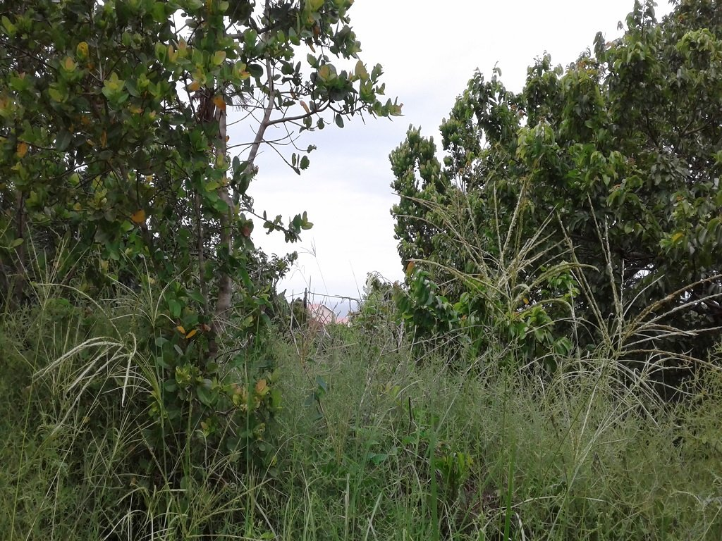 Port Edward, Palm Beach Property  | Houses For Sale Palm Beach, Palm Beach, Vacant Land  property for sale Price:480,000