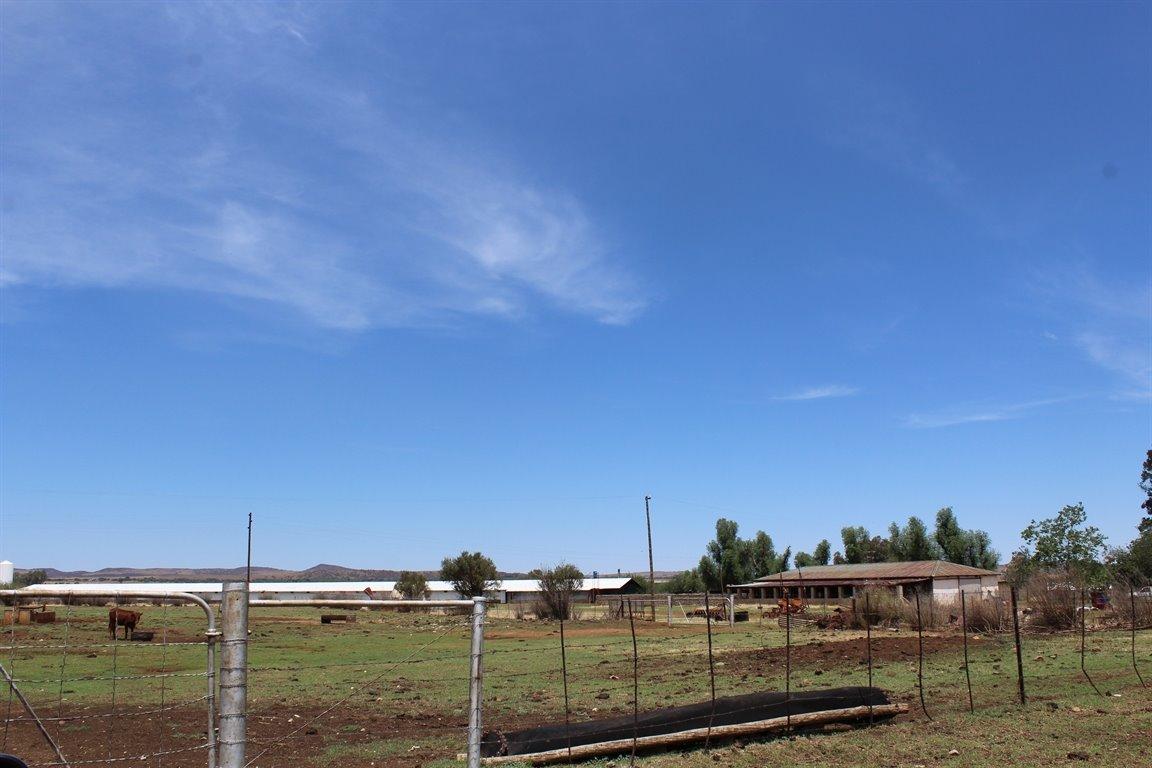 Rietfontein I Q property for sale. Ref No: 13409258. Picture no 8