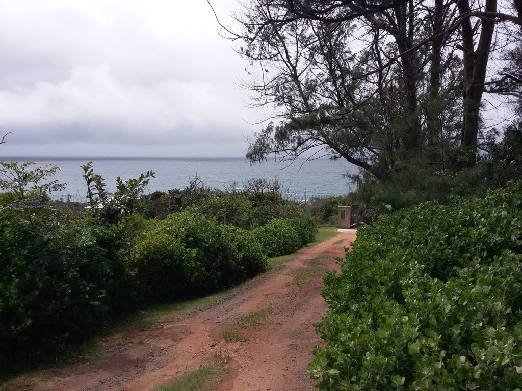 Bazley Beach property for sale. Ref No: 13256465. Picture no 6