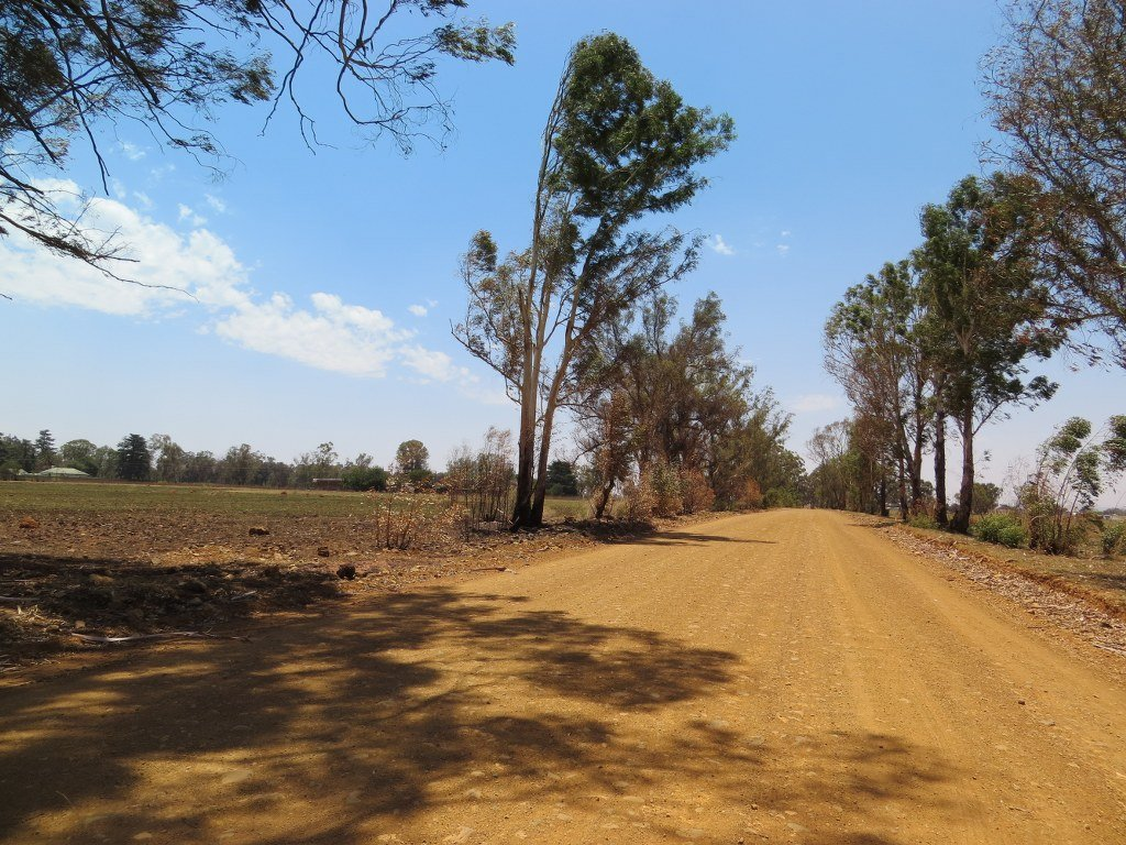 Meyerton Central property for sale. Ref No: 13585820. Picture no 7