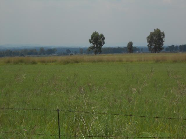 Chrissiefontein property for sale. Ref No: 13432406. Picture no 2