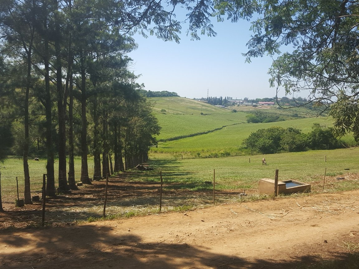 Empangeni, Empangeni Property  | Houses For Sale Empangeni, Empangeni, Farms  property for sale Price:63,000,000