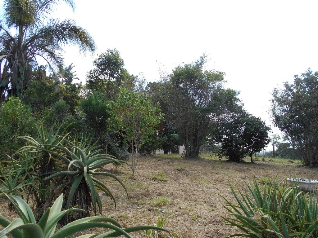 Uvongo property for sale. Ref No: 13325400. Picture no 3