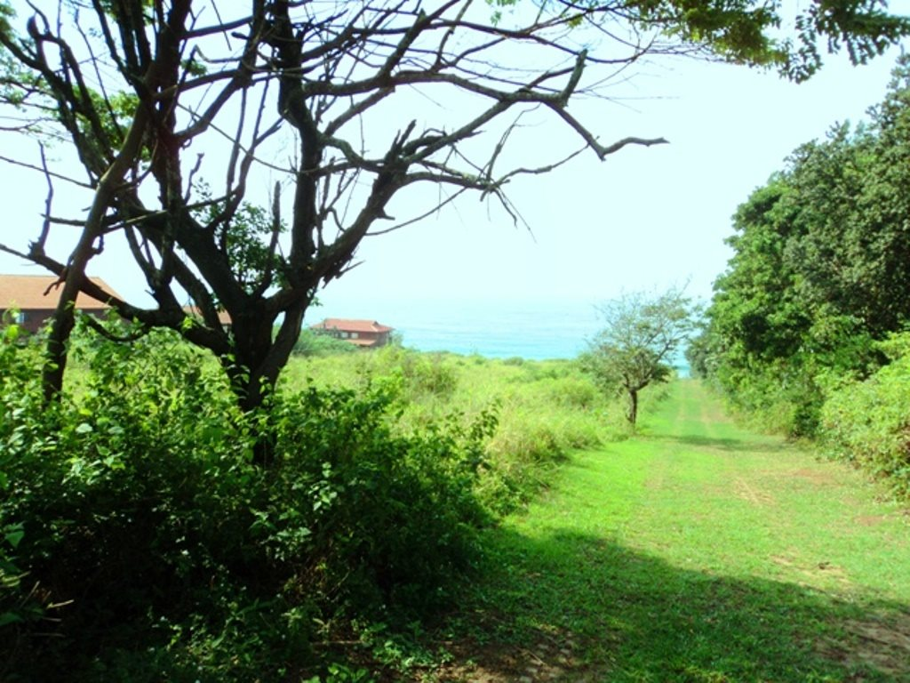 Bazley Beach property for sale. Ref No: 12729399. Picture no 2