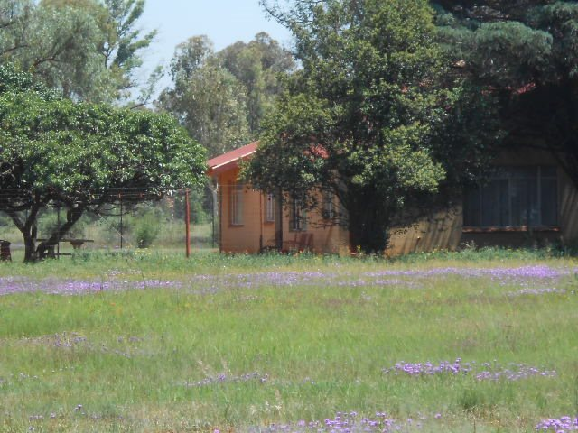 Valley Settlements A H property for sale. Ref No: 13430411. Picture no 4