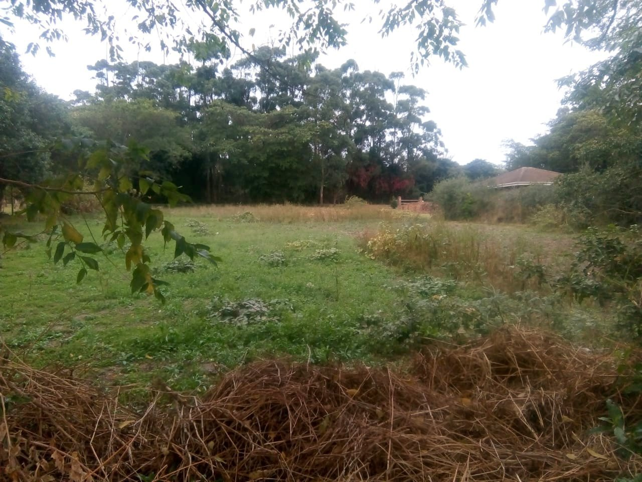 Pennington, Sezela Property  | Houses For Sale Sezela, Sezela, Vacant Land  property for sale Price:320,000