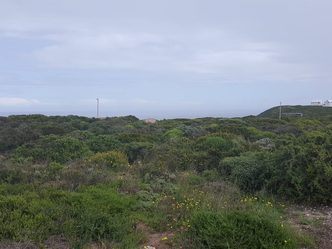 Yzerfontein property for sale. Ref No: 13385035. Picture no 3