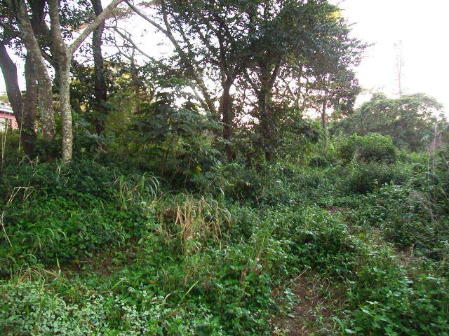 Pumula for sale property. Ref No: 2744217. Picture no 1