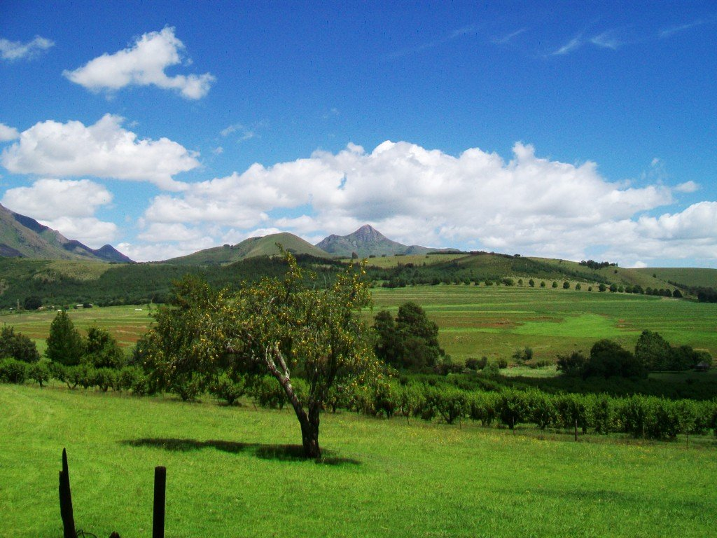 Kokstad, Kokstad Property  | Houses For Sale Kokstad, Kokstad, Farms 4 bedrooms property for sale Price:15,500,000