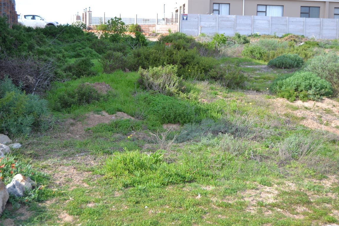 Lamberts Bay property for sale. Ref No: 13378668. Picture no 4