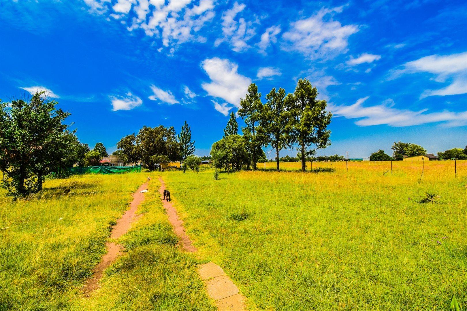 Vereeniging, Buyscelia Property  | Houses For Sale Buyscelia, Buyscelia, Farms 4 bedrooms property for sale Price:670,000