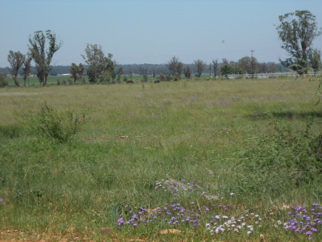 Valley Settlements A H property for sale. Ref No: 13430411. Picture no 6