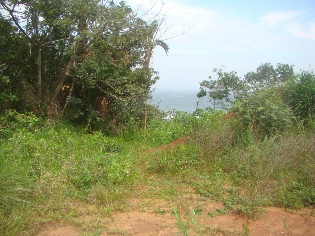 Pennington, Kelso Property  | Houses For Sale Kelso, Kelso, Vacant Land  property for sale Price:525,000