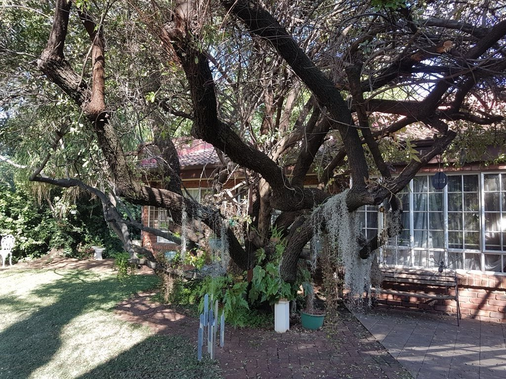 Heatherdale property for sale. Ref No: 13635556. Picture no 78