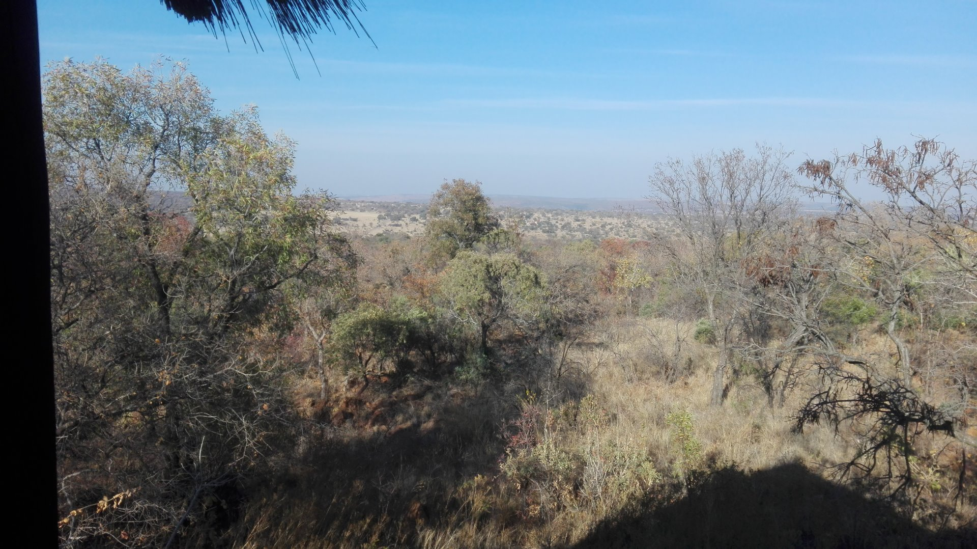 Cullinan Rural property for sale. Ref No: 13521469. Picture no 11