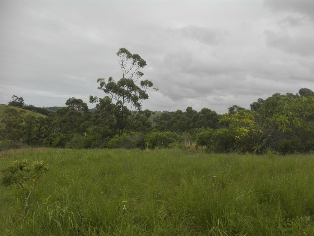 Sea Park property for sale. Ref No: 13400592. Picture no 14