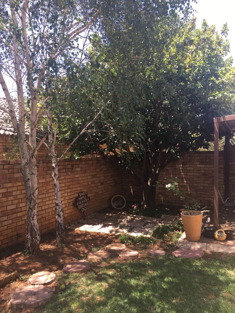 Wilgeheuwel property for sale. Ref No: 13553042. Picture no 14