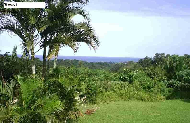 Property and Houses for sale in Anerley, Vacant Land - ZAR 3,000,000