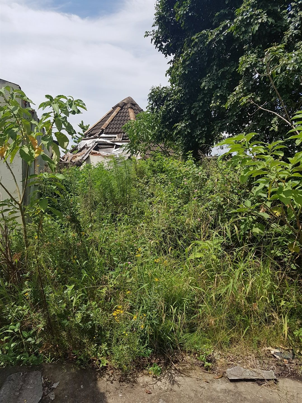 Craigieburn property for sale. Ref No: 13591749. Picture no 6