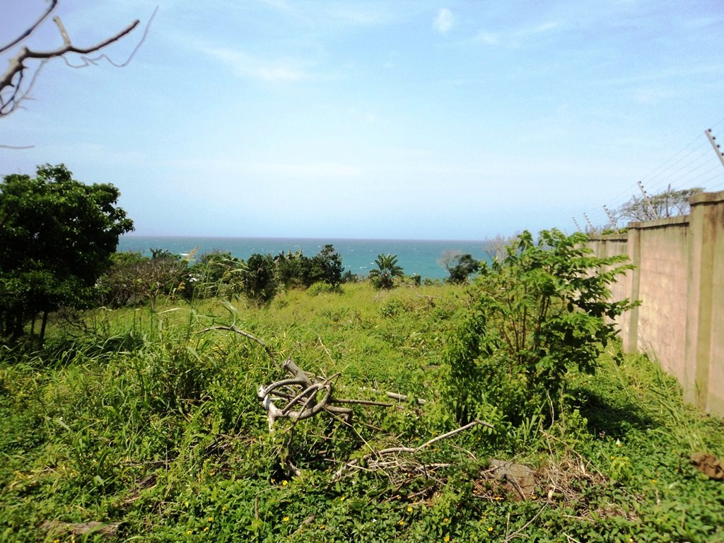 Bazley Beach property for sale. Ref No: 13256465. Picture no 7