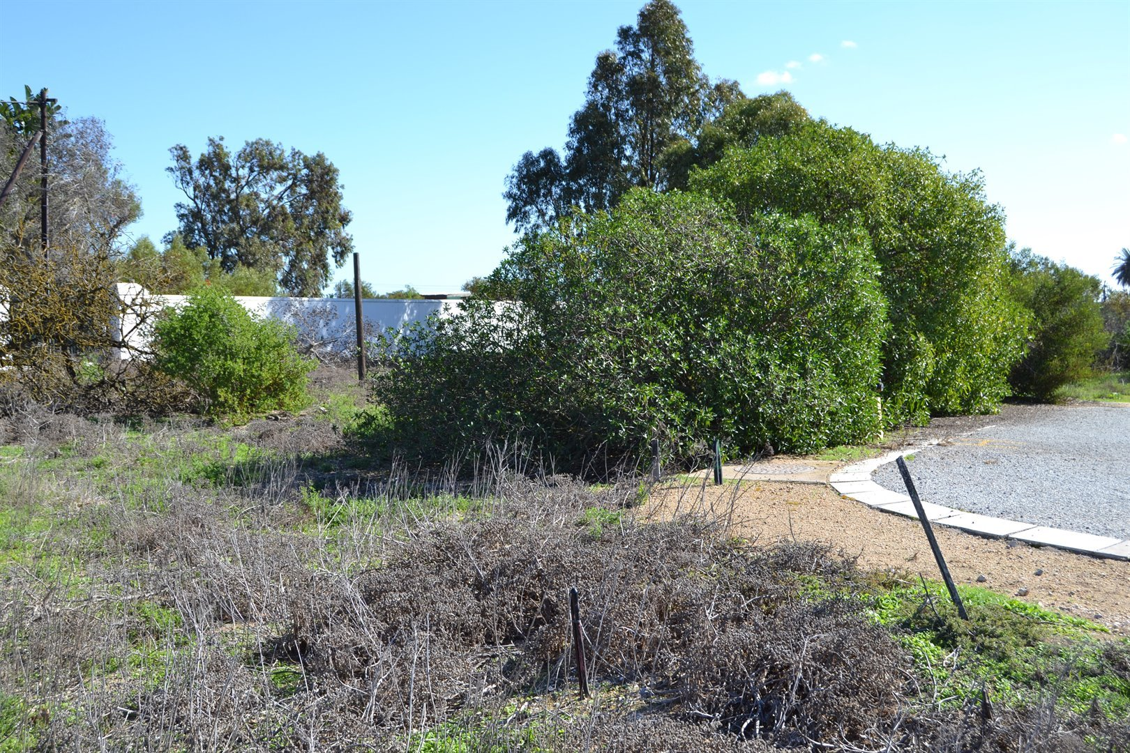 Shelley Point property for sale. Ref No: 13516454. Picture no 8
