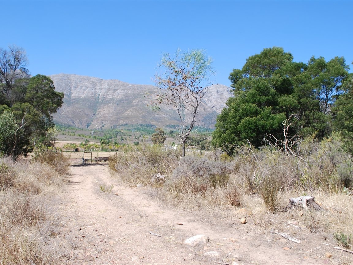 Tulbagh property for sale. Ref No: 12782916. Picture no 9