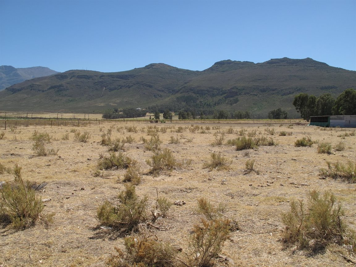 Tulbagh, Gouda Property  | Houses For Sale Gouda, Gouda, Vacant Land  property for sale Price:395,000